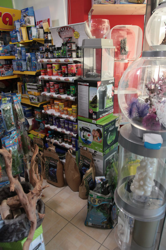 Aquariums For Sale in Paphos